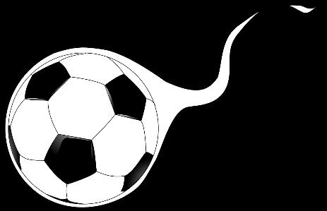 Sacramento adult soccer league